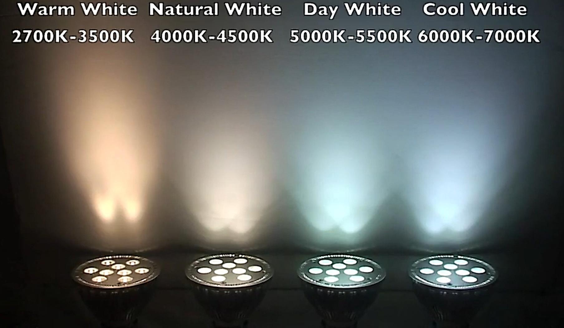 выбрали как определить какой свет нужен в фотографии повреждении цилиндра