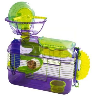 Evde Hamster Beslemek