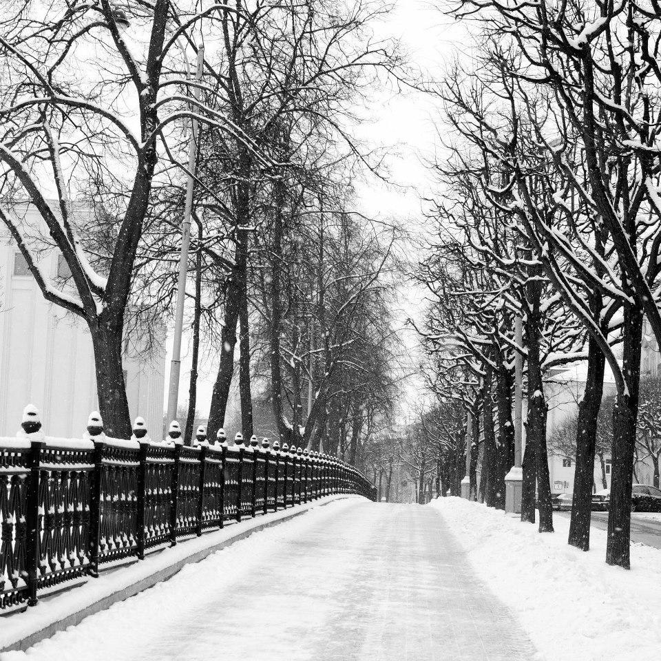 Beyaz Rusyadan araba: sadece sürmek