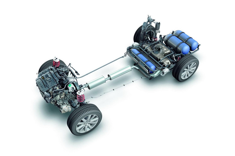 VW Passat sahipleri ve sevenler kulübü