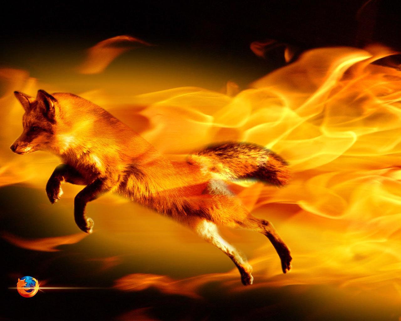 картинки огненная лиса давно