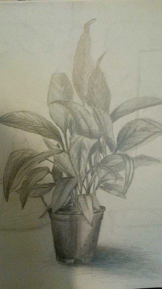 Karakalem çizimim Nasıl Güncel Sayfa 2 3